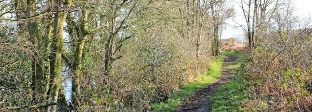 29 path along River Eden, Ruth hiking to Carlisle