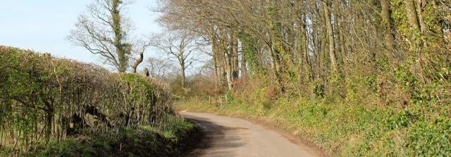 30 road walking to Rockcliffe Cross, Ruth's coastal walk, River Eden - Copy