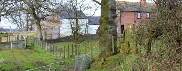 36 footpath around Garriestown, Ruth Livingstone - Copy
