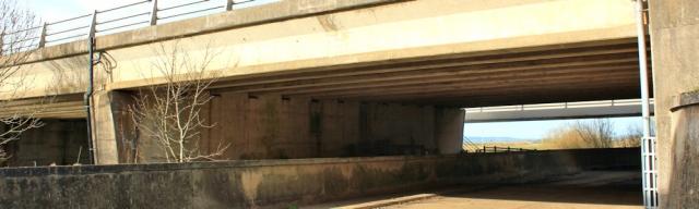 42 underpass, Metal Bridge, Ruth Livingstone on the River Esk - Copy