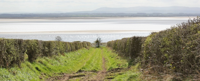 11 back to the Solway Shore, Ruth Livingstone in Scotland