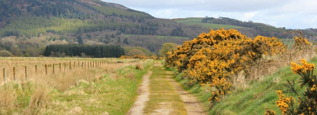 14 path back towards road, Mersehead, Ruth walking the Scottish coast, Dumfries and Galloway