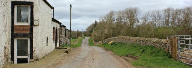 15 walking around Newbiebarns, Ruth's coastal walk, Dumfries and Galloway