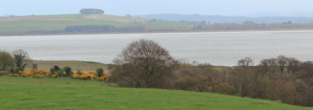 16 Drumburn viewing point and Ward Law, Ruth walking in Dumfries and Galloway