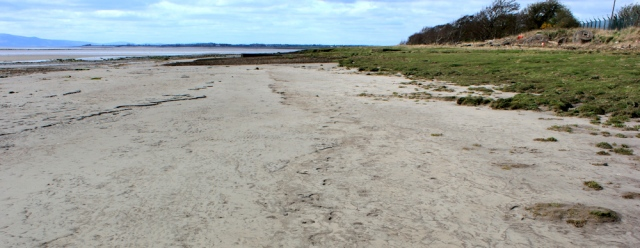 18 walking on muddy shore, Ruth's coastal walk