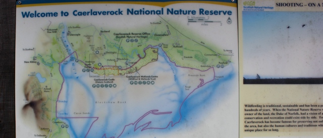 23 Caerlaverock Nature Reserve, Ruth walking the Scottish coast, Dumfries and Galloway