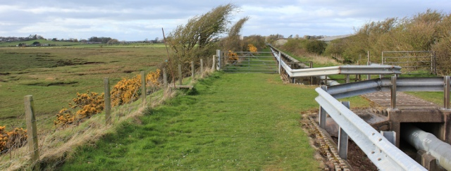 34 along railway embankment to Annan, Ruth's coastal walk, Scotland