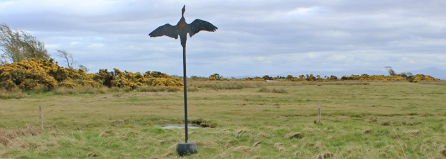 36 bird decoy, Ruth's coastal walk, Dumfries and Galloway