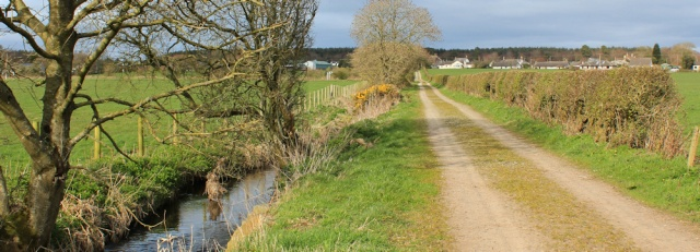 41 path to Clarencefield, Ruth's coastal walk, Dumfries and Galloway