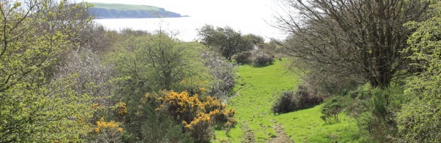 08 Torr Hill, Ruth's coast walk, Dumfries and Galloway
