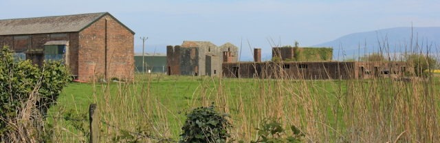 11 Baldoon Airfield, 02 naughty goats, Ruth's coastal walk, Southwest Scotland