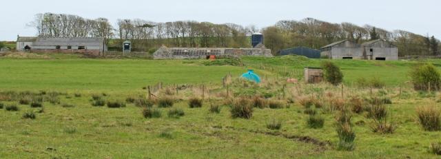 12 Borness farm, Ruth walking the coast of Scotland to Gatehouse of Fleet