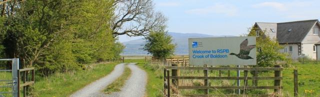 12 RSPB Crook of Baldoon, 02 naughty goats, Ruth's coastal walk, Southwest Scotland