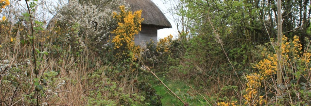 18 bird hide, Auchencairn Bay, Ruth's coast walk, Dumfries and Galloway