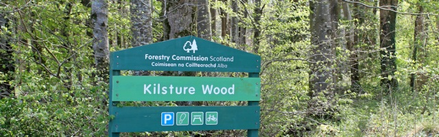 21 Kilsture Wood, Ruth's coastal walk, Dumfries and Galloway, Scotland