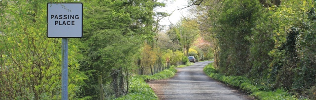 21 lane to Balcary Bay, Ruth's coast walk, Dumfries and Galloway