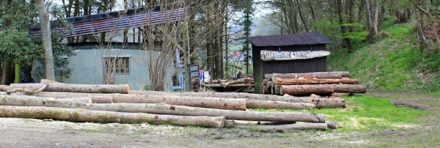 22 firewood, Ruth walking the coast of Scotland to Gatehouse of Fleet
