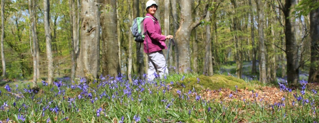 23 self-portrait in bluebell woods, Ruth's coastal walk, Dumfries and Galloway, Scotland