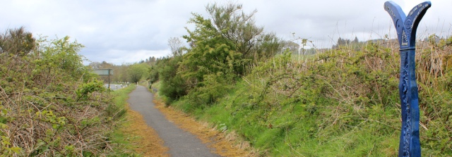 23 straight cycle route to Newton Stewart, Ruth Livingstone