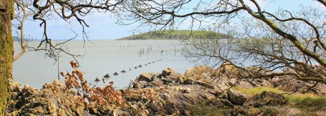 24 Hesten Island, Ruth's coast walk, Dumfries and Galloway