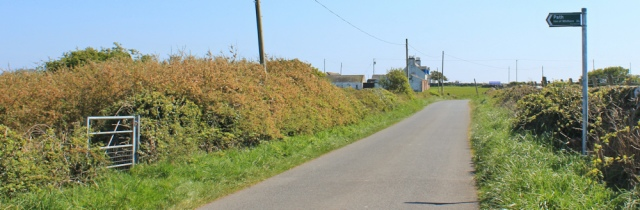 26 core path to Isle of Whithorn, Ruth walking the coast of Scotland