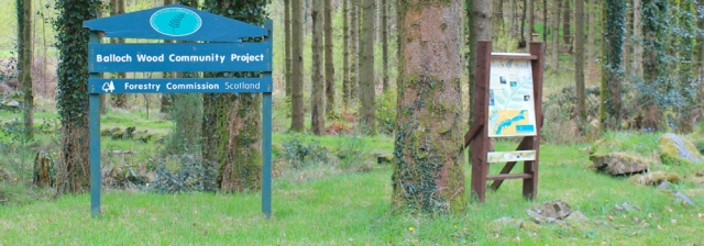 29 Balloch Wood Community Project, Ruth Livingstone in Scotland