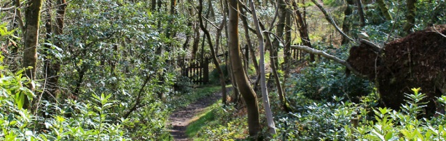 29 woodland walk, Ruth's coast walk, Dumfries and Galloway