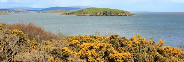 30 view back to Southerness, Ruth's coast walk, Dumfries and Galloway