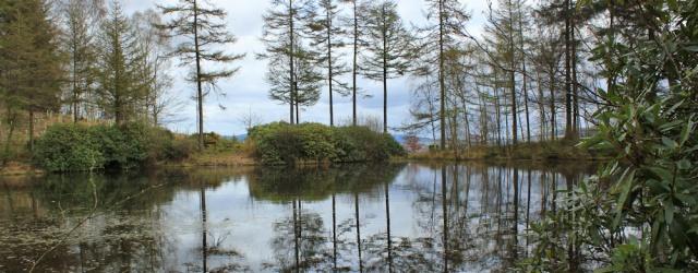 31 Loch Gavin, Ruth's coastal walk, Dalbeattie, Scotland