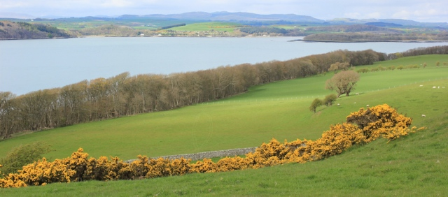 32 Ruth looking over Kirkcudbright Bay, Dumfries and Galloway, Scotland