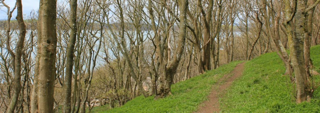 34 footpath along shore to Mutehill, Ruth's coastal walk, to Kirkcudbright