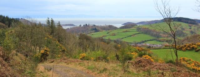 36 Kirkennan Plantation, Ruth's coastal walk, Dalbeattie, Scotland