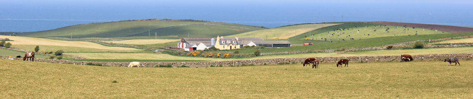 near Kirkcolm, Ruth Livingstone