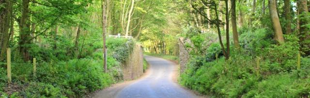 02 minor road to Portpatrick, Ruth's coatal walk, The Rhins, Galloway, Scotland