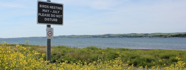 10 Birds Nesting sign, The Wig, Stranraer, Ruth's coastal walk, Scotland, Galloway