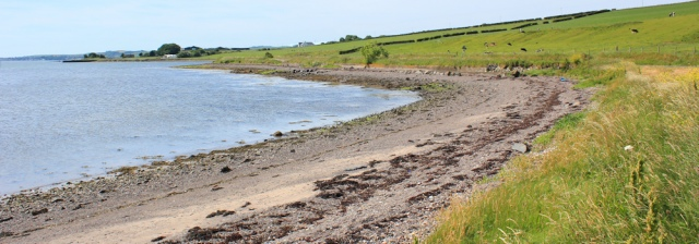 13 shore, The Wig to Stranraer, Ruth's coastal walk, Scotland, Galloway