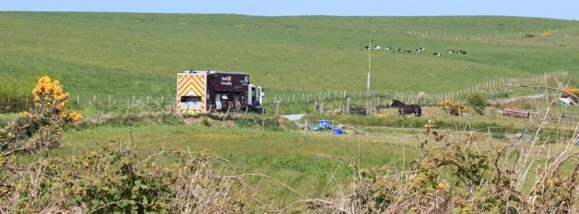 20 recycling van again, Ruth Livingstone
