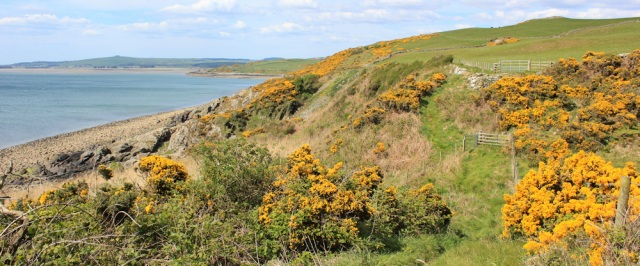 24 Ruth's coastal walk, approaching Stairhaven, Galloway, Scotland