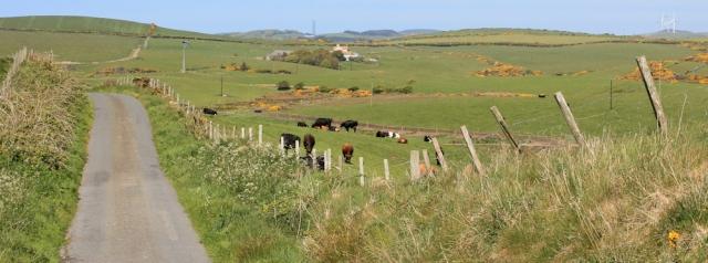 26 road walking, Ruth hiking through The Rhins, Galloway, Scotland