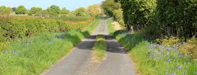 27 Ruth Livingstone hiking in Scotland