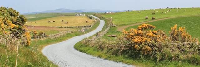 29 road to Kirkcolm, Ruth's coastal walk, The Rhins, Galloway