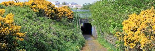 30 underpass to Glenluce, Ruth hiking in Dumfries and Galloway, Scotland