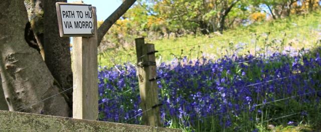 31 path to where, Ruth hiking through The Rhins, Galloway, Scotland
