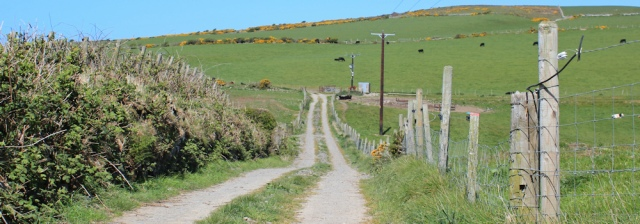 31 track towards Port Logan, Ruth's coastal walk, The Rhins, Scotland
