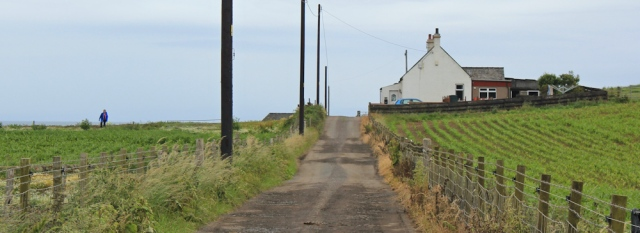 16 farm track, Gallow Hill, Ruth Livingstone walking the Ayrshire Coastal Path