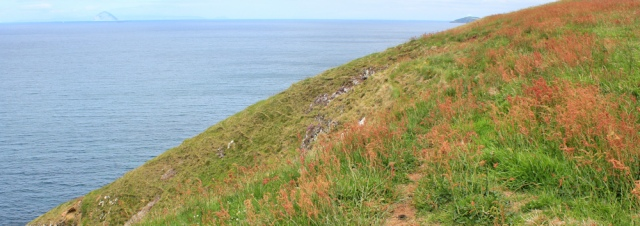 20 cliff top walk, to Ballantrae, Ruth Livingstone in Scotland