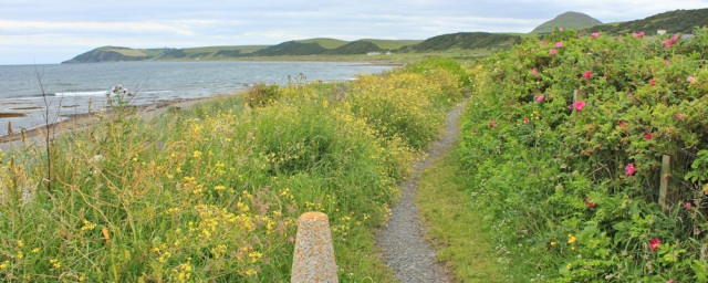 Ballantrae, Ruth Livingstone on her coastal trek, Scotland