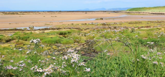 09 Beach walking to West Kilbride, Ruth hiking the Scottish Coast