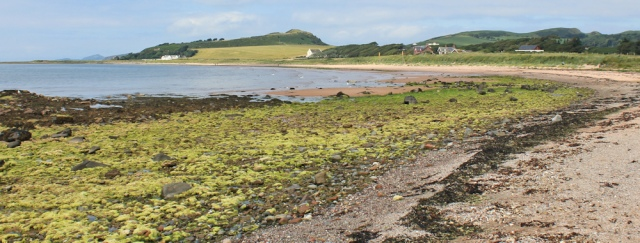 15 Ruth walking the beach from West Kilbride to Portencross, Scotland, Ayrshire Coastal Path