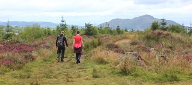 15 walking around the Giant's Graves, Isle of Arran, Ruth's coastal walk